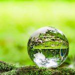 企業が実践可能な温暖化対策の事例4つ 環境省が示す対策ステップも